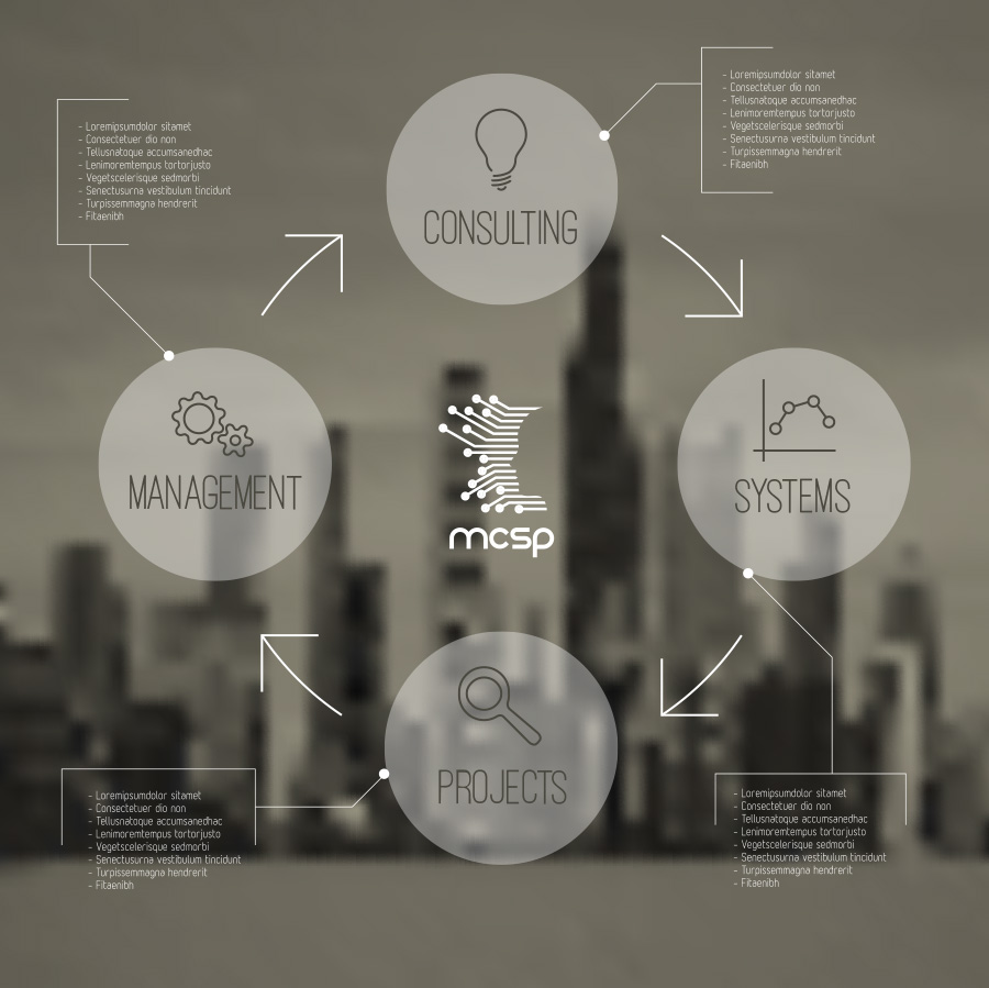 Management, Consulting, Systems, Projects